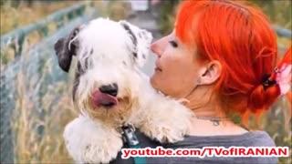 ماجرای زنی که به خاطر ازدواج با سگش از همسرش جدا شد!