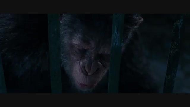فیلم سینمایی جنگ برای سیاره میمون ها War For The Planet Of The Apes 2017