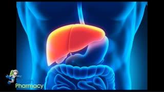 چگونگی تشخیص بیماریهای کبدی در مراحل اولیه