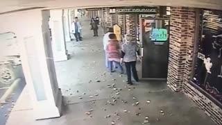 حمله گوزن به آرایشگاه
