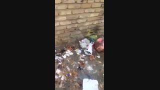 وضعیت بهداشتی آزمایشگاه مرکزی شهرستان کوهدشت