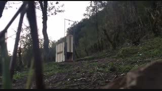 رهاسازی پلنگ رودسر