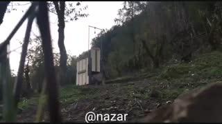 رهاسازى پلنگ رودسر در زیستگاه طبیعی خود