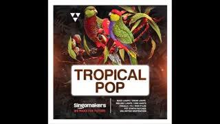 دانلود سمپل های جدید پاپ Singomakers Tropical Pop MULTiFORMAT