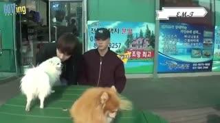 GOT7 vs animals ویدیویی از رابطه ی فوق العاده اعضای گات سون با حیوانات ، بی نهایت خنده دار ، جکسون رو که دیگه نگوو^-^
