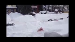 آموزش شنا در برف ...  جرات داری امتحان کن