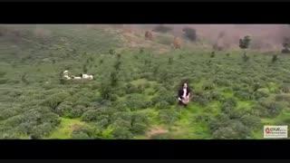 موزیک ویدیو امیرعباس گلاب گونه