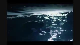 دانلود قسمت نوزدهم 19 سریال مروارید سیاه با دوبله فارسی کامل