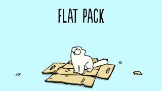 درگیری گربه سایمون با جعبه های مختلف