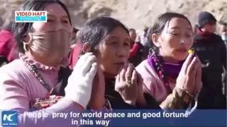 شنهای مقدس در تبت
