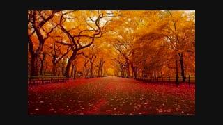 موزیک ویدیو پاییزی بسیار زیبا