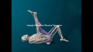 کشش عضلات بدن