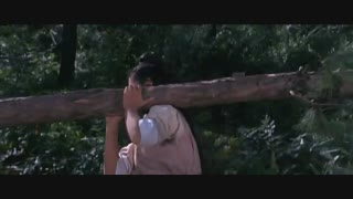 دانلود فیلم خطرناک ترین زن شائولین با دوبله فارسی