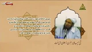 نقل فضیلتی بینظیر از امیرمومنان از شیخ حبیب علی الجفری از علمای نامدار  اهل سنت