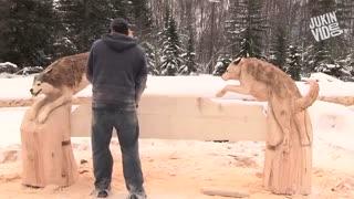 تراشکاری زیبا روی چوب