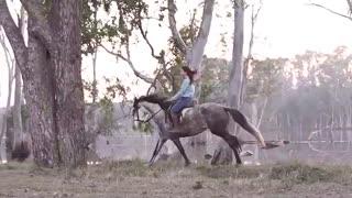 اسب سواری در تعطیلات (شهر اندولوسیا اسپانیا)