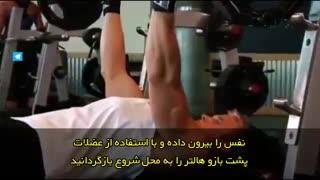 آموزش حرکت بدنسازی - پرس پشت بازو هالتر معکوس