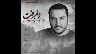 امیرحسین شیخ حسنی - دلم رفت