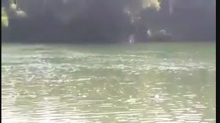 فیلم مستند ماهیگیری