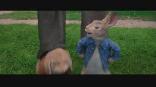 """دانلود انیمیشن """" پیتر خرگوشه """"  2018 Peter Rabbit با دوبله فارسی"""