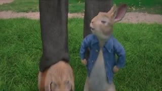 فیلم پیتر خرگوشه  (Peter Rabbit 2018)