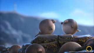 """انیمیشن کوتاه """"اگر حیوانات گرد بودند"""""""
