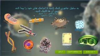 نرم افزار چندرسانه ای آموزش زیست شناسی