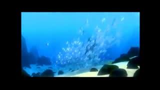 پیش نمایش هایی که در نسخه dvd انیمیشن شیر شاه 3 محصول 2003 پخش شده اند