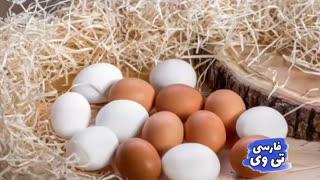 با خوردن یک تخم مرغ، چه اتفاقاتی در بدن شما می افتد؟