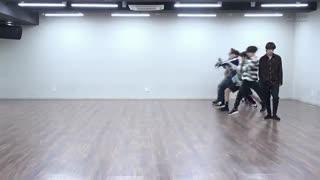 BTS DANCE PRACTICE FAKE LOVE