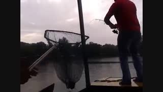 فیلم مستند ماهیگیری کپور بزرگ با لنسر ماهیگیری