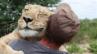 حس خوب نجات حیوانات