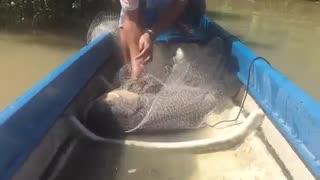 زیباترین فیلم مستند ماهیگیری کپور بزرگ با  تور پرتابی(26 دقیقه فیلم اموزش ماهیگیری کپور)