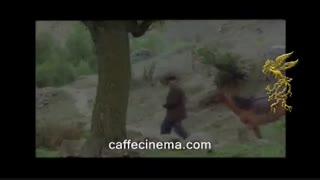 دانلود رایگان فیلم روییدن در باد