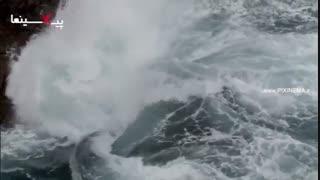 سیاره انسان - اقیانوسها : ریسک خطر مرگ برای شکار بارناکل گردن غازی