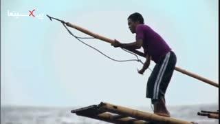 مجموعه سیاره انسان شکار نهنگ عنبر عظیم الجثه با نیزه توسط افراد دهکده ای در اندونزی