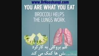 تاثیر غذا بر اعضای بدن
